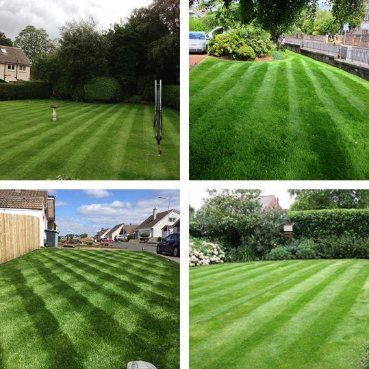 Lawn Care - Landscape Garden Services Lanarkshire