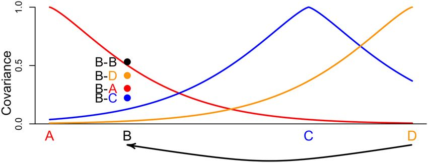 Fig 11. Illustrated example of spatial covariance and the effects ...