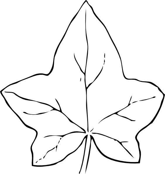 Ivy Leaf clip art - vector clip art online, royalty free & public ...