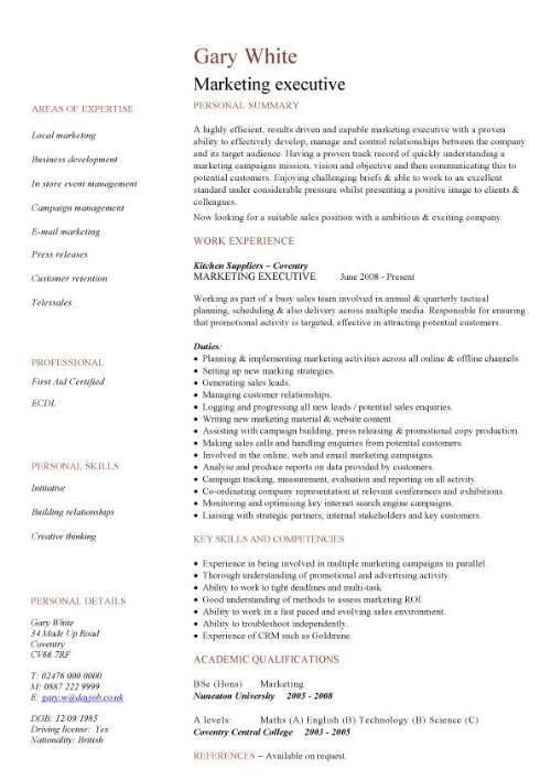 Sales Executive Resume Example Simple Resume Template 20889 ...