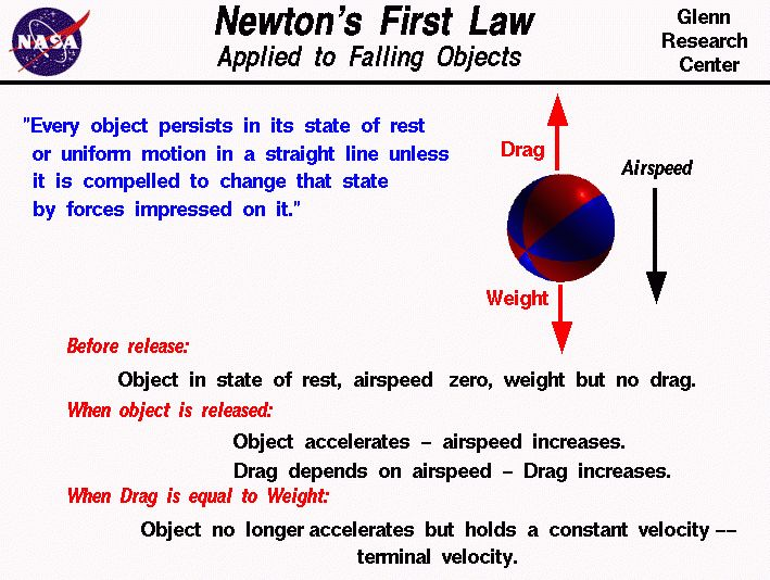 Newton's First Law Applied to a Falling Object