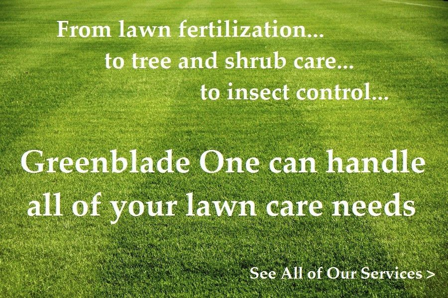 Greenblade One - Local Lawn Care - Grand Rapids | Jackson | Ann ...