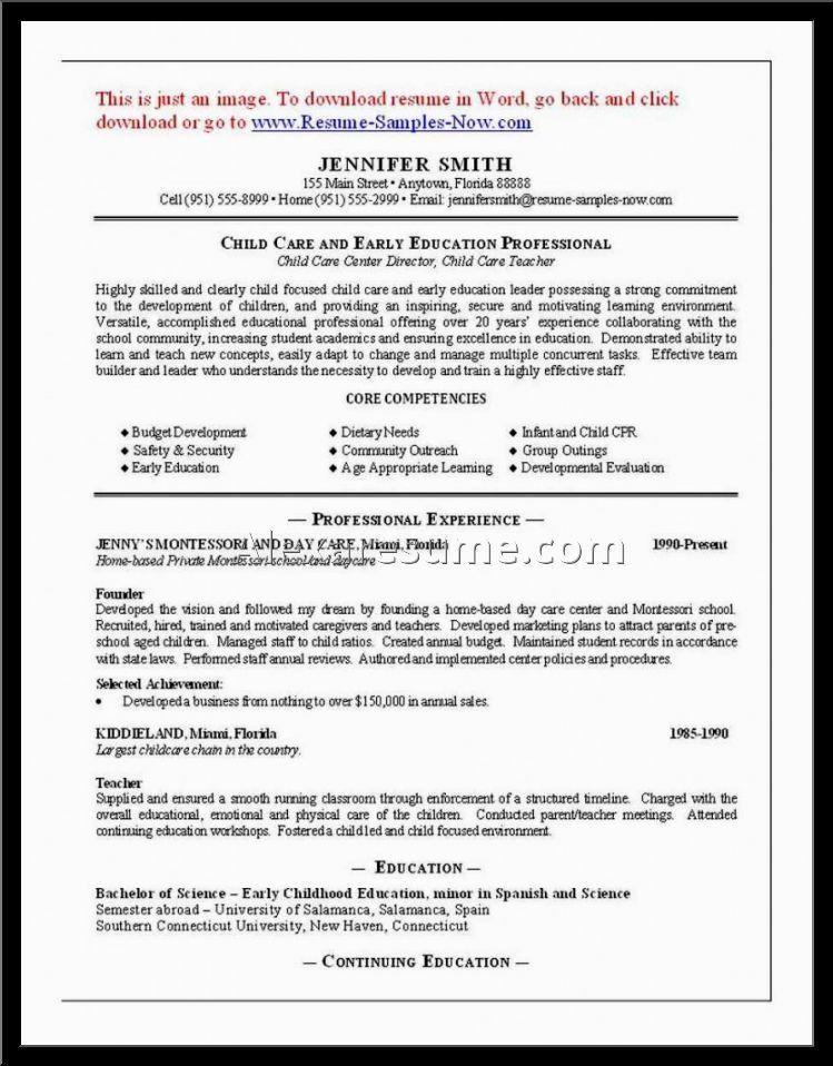 Home Daycare Job Description Resume - Contegri.com