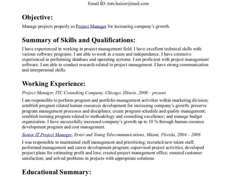 Stylish And Peaceful Resume Objective Statements 8 Resume ...