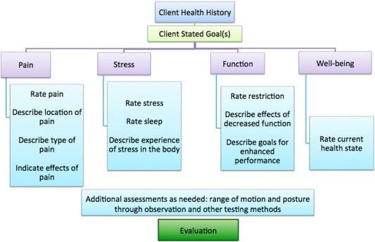 Process for massage therapy practice and essential assessment ...