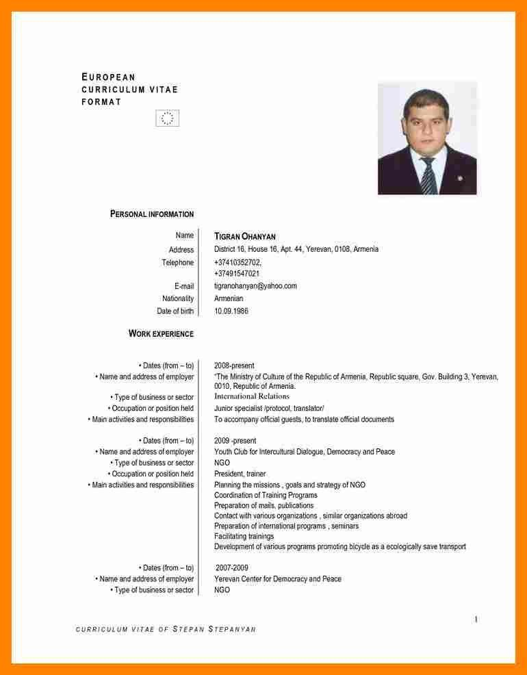 6+ cv in english examples | resume sections