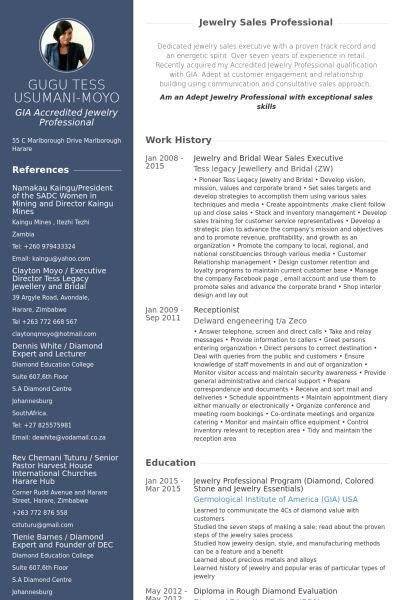 Sales Executive Resume samples - VisualCV resume samples database