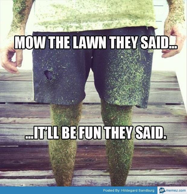 Mow the lawn they said | Mowing the Lawn | Pinterest | Lawn, Humor ...