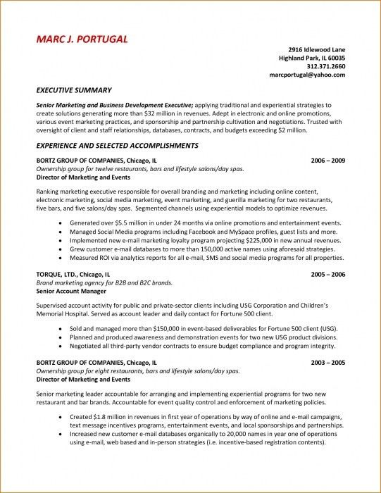 The Incredible Resume Executive Summary Example | Resume Format Web