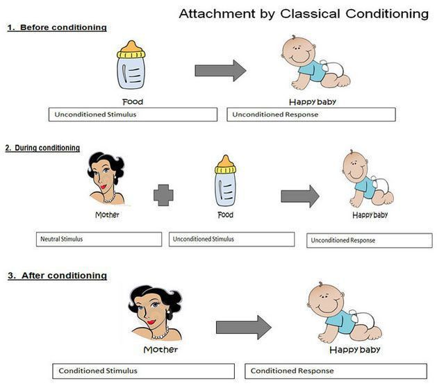 Best 25+ Classical conditioning psychology ideas on Pinterest ...