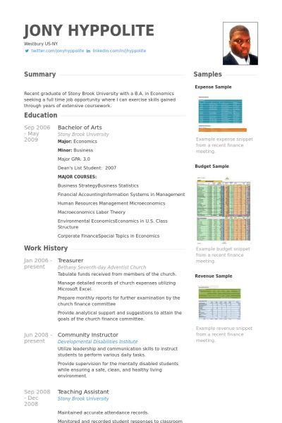 Treasurer Resume samples - VisualCV resume samples database