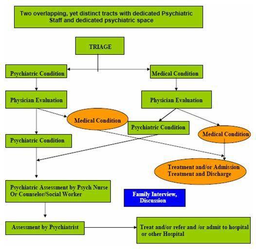 A Literature Review: Psychiatric Boarding | ASPE