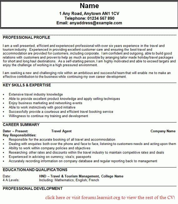 Resume Example Travel Agent - Augustais