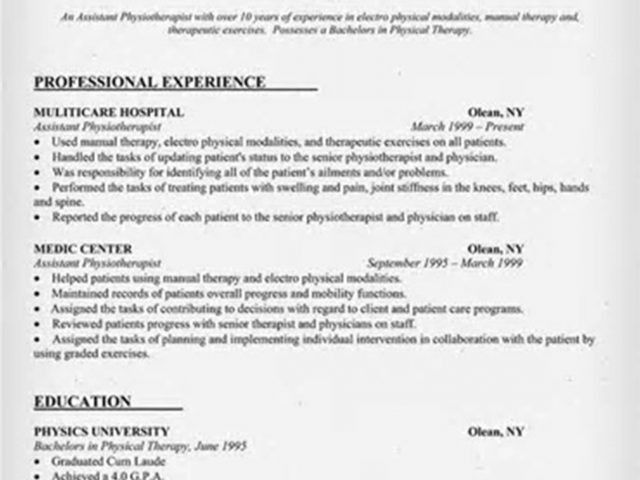physiotherapy resume format with additional summary sample with ...