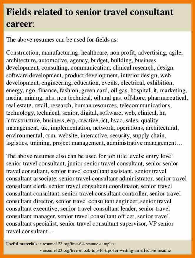 Sample Travel Consultant Resume - Contegri.com