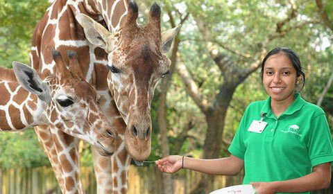 Chicago Zoological Society - Job Openings
