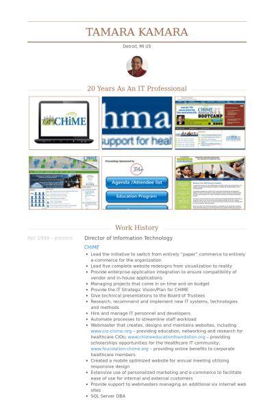Director Of Information Technology Resume samples - VisualCV ...