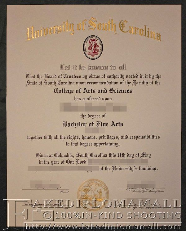 bachelor degree from University of South Carolina, where to ...