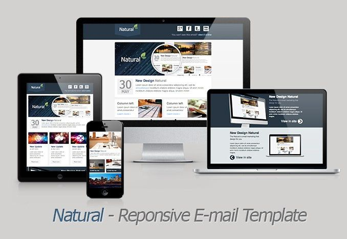 Natural - Responsive Email Template by akedodee | ThemeForest