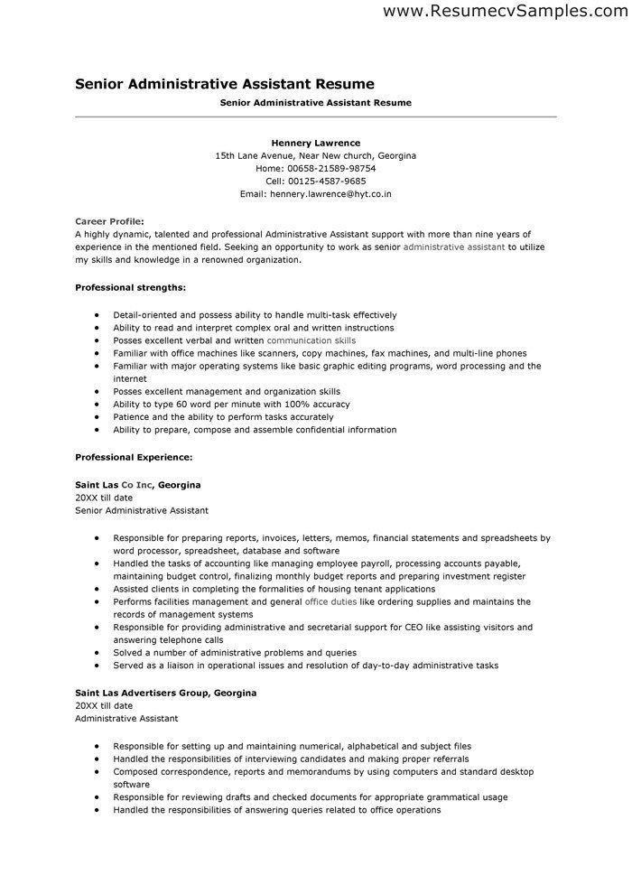 Good Executive Summary For Resumes. breathtaking good summary for ...