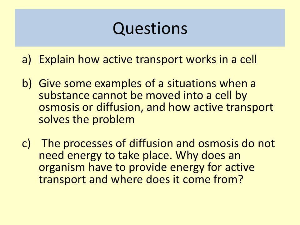 B3 Active Transport Mrs S Carpenter. - ppt video online download