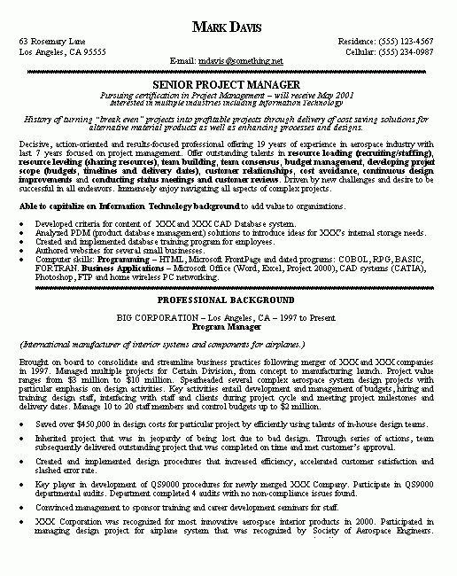 Project Manager Resume Example - Samples