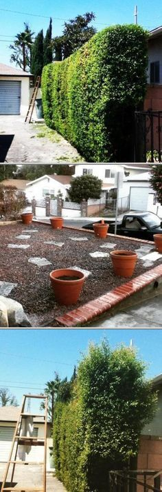 Manuel Morales Gardening Service has been providing landscaping ...