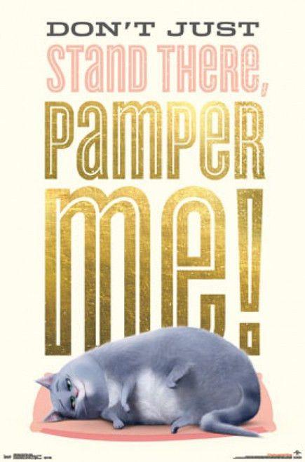Secret Life of Pets - Chloe Poster Poster Print - Item ...
