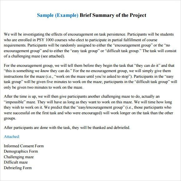 Project Recap Template Sample Project Summary Template 8 Free - project summary report example