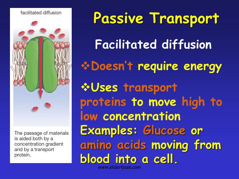 Cytolysis & Plasmolysis - SliderBase