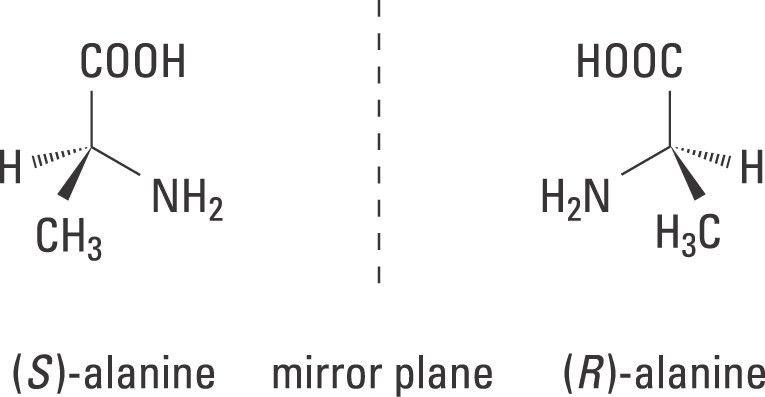 The Nobel Prize in Chemistry 2001 - Popular Information