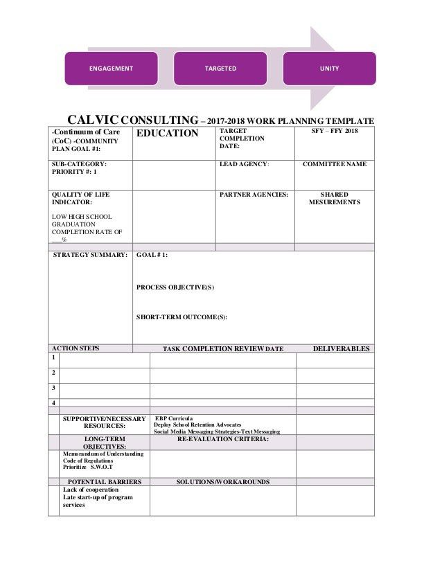 CALVIC Consulting- Work Plan template 2017