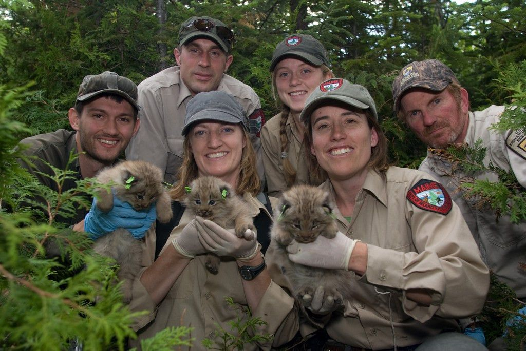 Wildlife Biologist Images - Reverse Search