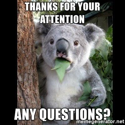 thanks for your attention any questions? - Koala can't believe it ...