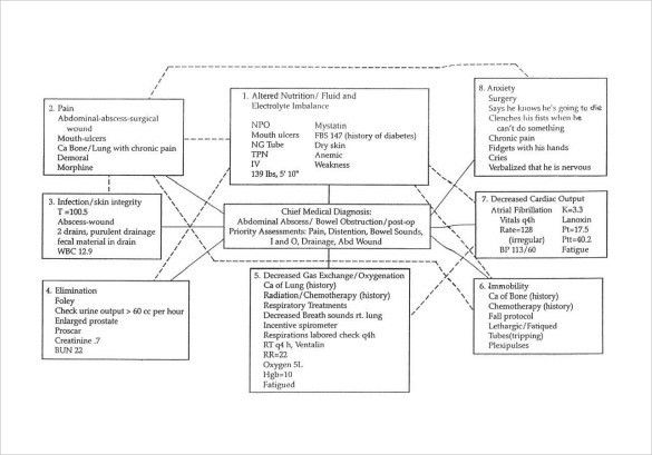 Sample Concept Map Template - 10+ Free Documents in PDF, Word
