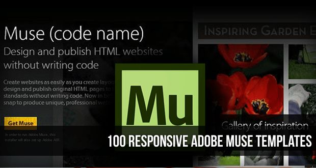 100 Best Responsive Adobe Muse Templates | webdesign | Pinterest ...