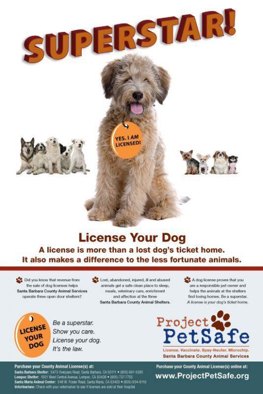 Project PetSafe – Santa Barbara County Animal Services