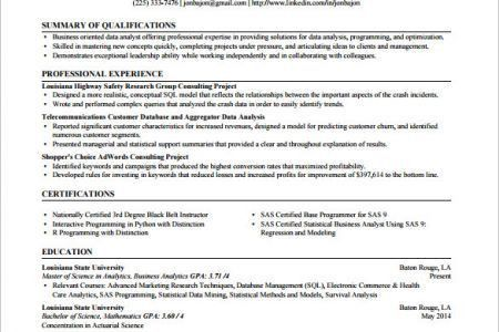 sas programmer resume sample job resume samples. sas business ...