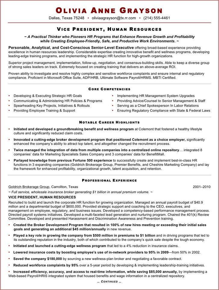 vice president of human resources resume resume sample 20 human