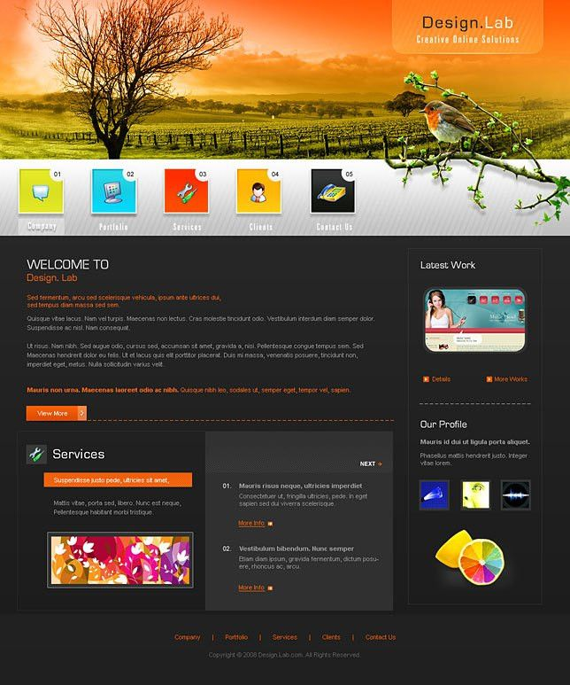 Download website design software templates