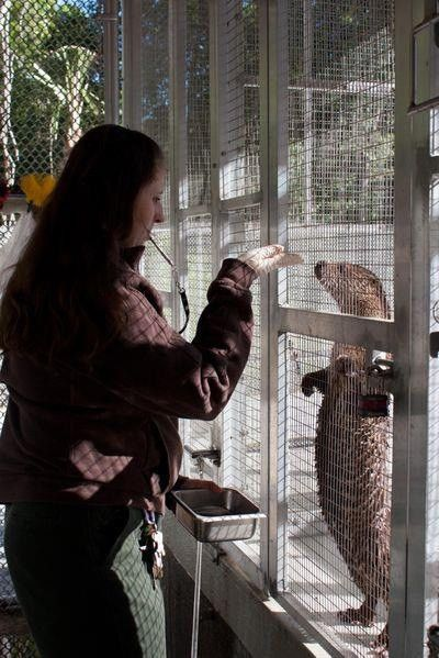 From the Zoo….. So You Want to be a Zookeeper? – Friends of ...