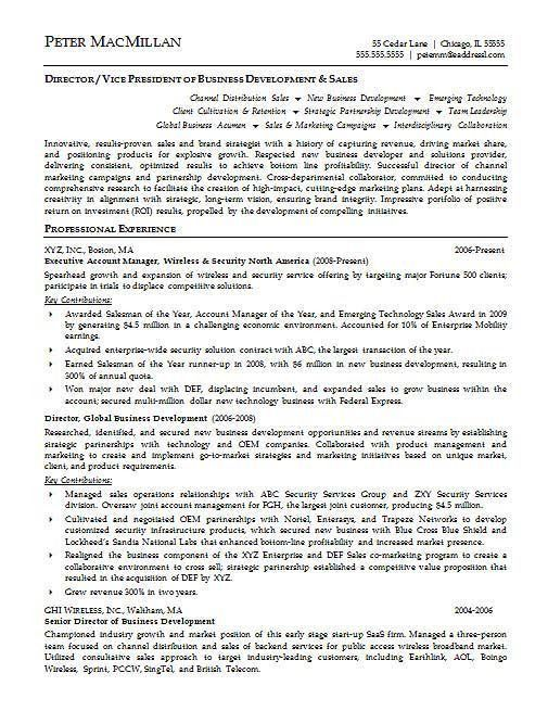 Environmental Executive Resume Example | Executive resume and ...