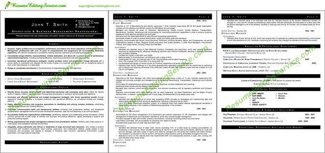 Professional Chronological Resume Format Editing | Resume Editing ...
