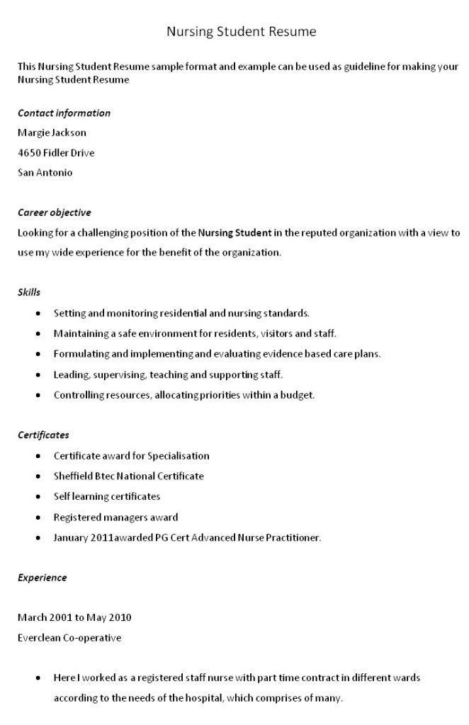 Nursing Resume Objective Statement [Template.billybullock.us ]