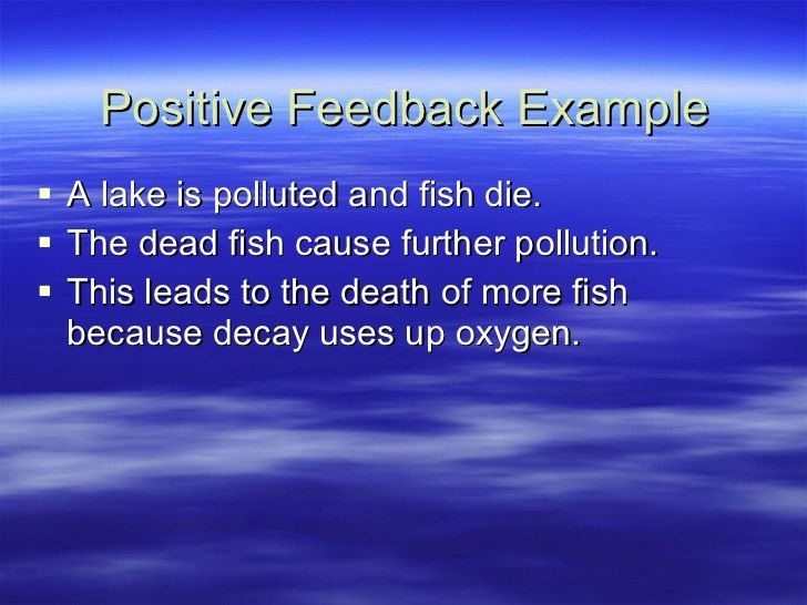 Ecosystems 4 Dynamic Equilibrium And Feedback