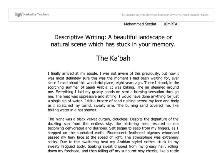 essay example descriptive essay person writing a descriptive essay ...