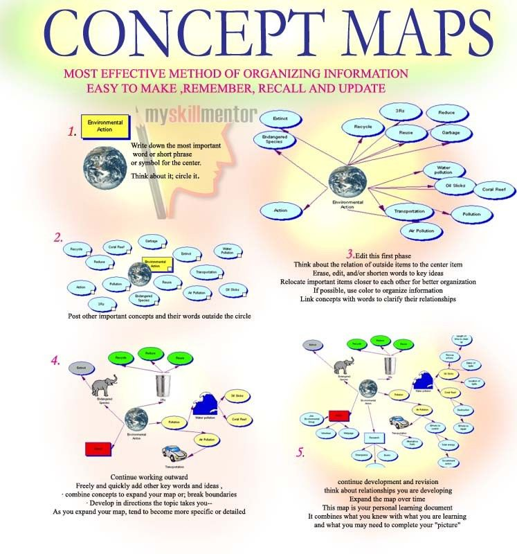 Evolution Concept Map | Natural history museum | Pinterest | Life ...