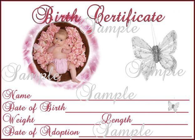 Sample Business Meeting Agenda : Baby Birth Certificate Template ...