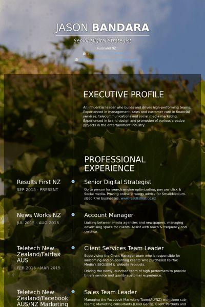 Team Leader Resume samples - VisualCV resume samples database