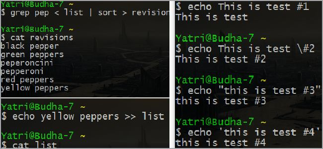 The Beginner's Guide to Shell Scripting 3: More Basic Commands ...